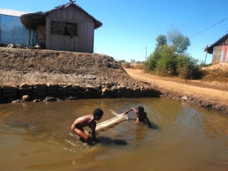 Les enfants tentent d'attraper quelques petites crevettes avec une moustiquaire servant de filet